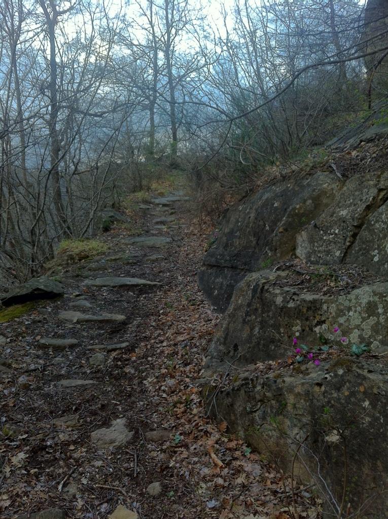 Il sentiero per Macchia Vomano, Aiello e Figliola - Ph. Angelo Mastrodascio