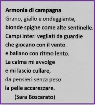 Armonia di campagna di Sara Boscarato