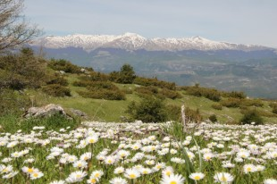 I Monti della Laga, visti da Colle Ceraso - Cerqueto - Ph. Giuseppe Bianchini