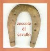 zoccolo_cavallo